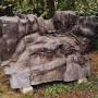 Garten--07-Mauerfossil